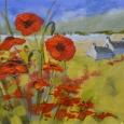 Poppies, Loch Ard