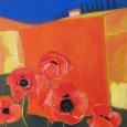 Poppies, Monpazier
