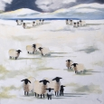 Snow Sheep II