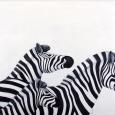 Zebra III