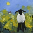 Lamb And Daffs